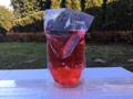 Obrazek Uzupełniacz / przynęta do pułapki na osy i muchy 400 ml
